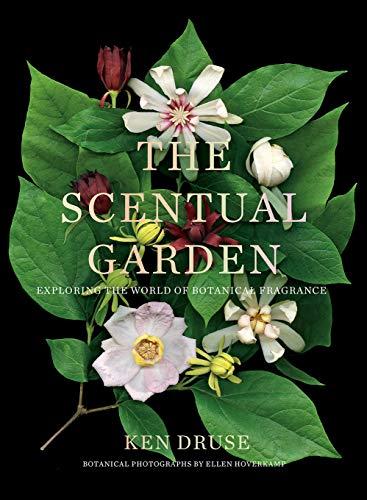 Scentual Garden:...