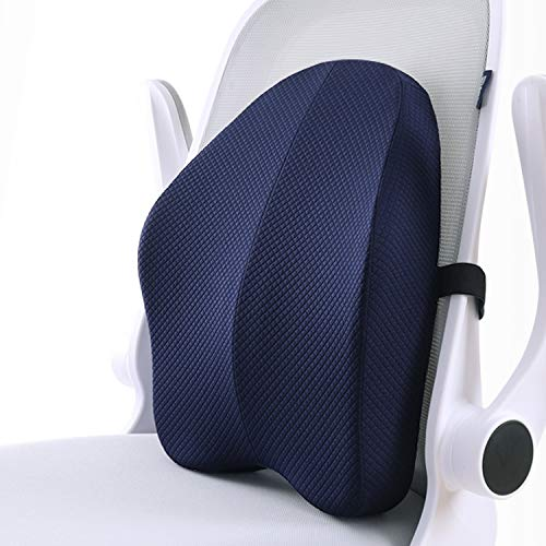 matvio Back Support Pillow for Office Chair - Ergonomic Posture Corrector Pure Memory Foam Lumbar Cushion - Perfect Backrest for Car, Desk, Recliner Chair and Any Seat