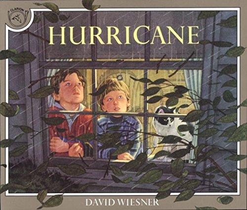 Hurricane by David Wiesner(1992-08-24)