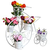 LANHA Metal Soporte para Flores, 5 Niveles Soporte De Planta Soporte De Planta Moderno Diseño De Bicicletas Estante De Exhibición De Flores para Oficina En Casa Balcón Sala De Estar Jardín (Blanco)