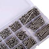 ZSRXL 440pcs / tornillos de fijación M3 Tuercas Kits Set de acero inoxidable de cabeza hexagonal tornillos de cabeza hueca y frutos secos Surtido + 2 llaves hexagonales