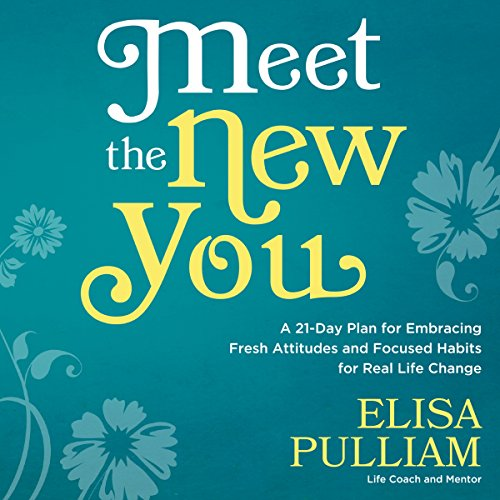 Meet the New You cover art