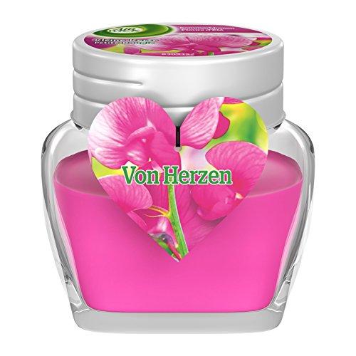 Air Wick kleine Kerze, Sommerblumen Duft, 4er Pack (4 x 1 Stück)