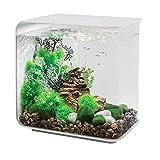 biOrb Flow 30 Aquarium with LED - 8 Gallon, White