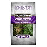 Pennington 100520284 One Step Complete For Dense Shade Areas, 8.3 lbs