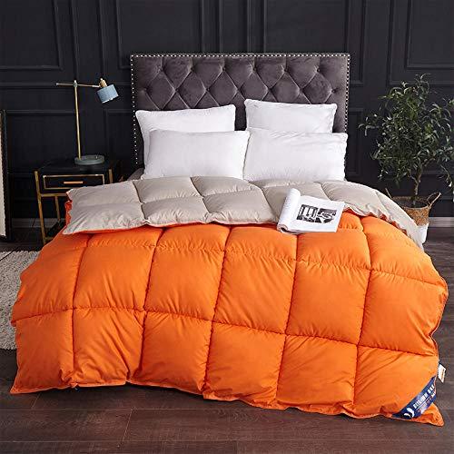 CHOU DAN Bettdecke 200x200cm Winter Gefüllte Mehrzweckbettdecke doppelt/doppelt extra groß 220x240cm 3500g