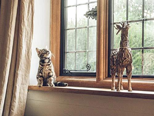 Geen olieverfschilderij digitale DIY kat Soriano grijs dicht bij het raam