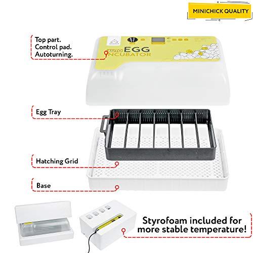 MINICHICK: Brutkasten für Hühnereier mit automatischer Eierwende. Entwickelt in Spanien. Enteneier-Inkubator mit Temperatur- und Feuchteregelung.