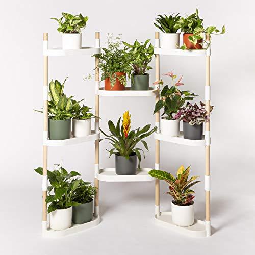 Citysens - Estantería para Plantas
