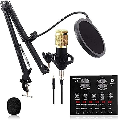 SSYS Paquete de micrófono de Condensador, Equipo de Tarjeta de Sonido Colgante...