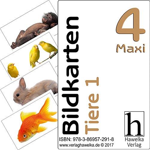 Bildkarten 4 -Maxi- Tiere 1 - (Fotokarten in Postkartengröße / etwas schmaler) - ideal in der Altenpflege, Geriatrie und Heimbetreuung, Biografiearbeit, Sprachförderung, Pädagogik, Therapie