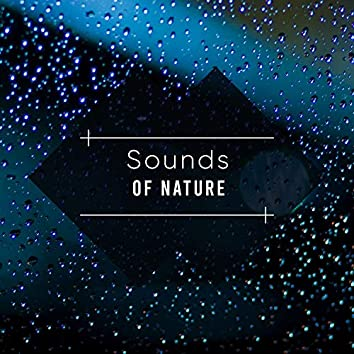 15 Sounds of Nature for Relaxation and Spa