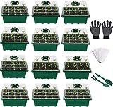 VDYXEW Mini Gewächshaus - für bis zu 12 Pflanzen Je Zimmergewächshaus, Zimmergewächshaus Anzuchtkasten Mini Gewächshaus ,Grün/Transparent (12 Stücke)