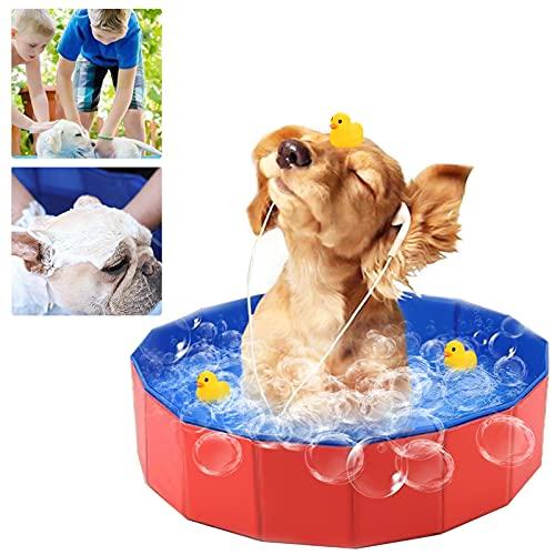 Gxhong Piscina per Cani, Piscina Pieghevole per Cani Gatti Animali, Portatile Vasca da Bagno, Antiscivolo in PVC Piscina per Cani Piccoli Grandi Animali Domestici Gatti e Bambini
