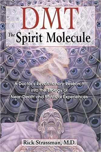 [0892819278] [9780892819270] DMT: The Spirit Molecule: A Doctor's Revolutionary Research into the Biology of Near-Death and Mystical Experiences-Paperback