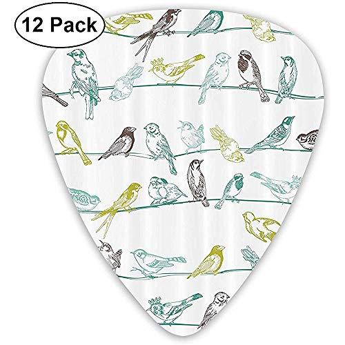 12 Pack Alle soorten vogels zijn op de draden Gitaar Picks Complete Gift Set voor Gitarist