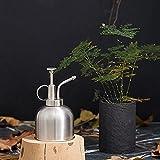300 ml Retro de latón regadera vintage de acero inoxidable para jardín, flor planta, vaporizador,...