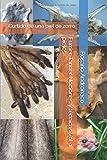 Furrier Tanner Nociones y técnicas Vol. 1 pieles: Curtido de una piel de zorro