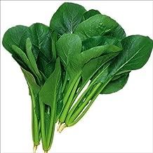 【メール便配送】国華園 種 野菜たね 健康野菜 F1丸葉小松菜 1袋(8ml)【※発送が株式会社 国華園からの場合のみ正規品です】