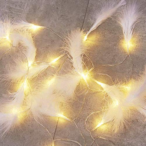 DEDC 9.8 Ft 20 LED Feather String Lights Feathers Garland Battery Operate Fairy String Lights Hanging for Wedding Party Home Wall Decor Decoration (White Feathers)