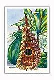 Pacifica Island Art Mele Pua (Flower Song)-Hawaiian Ukelele, Leis, Ti Hojas de Oferta-de una Pintura Original de la Acuarela de Hawaii Peggy Chun-Arte Master Print-12inx18in