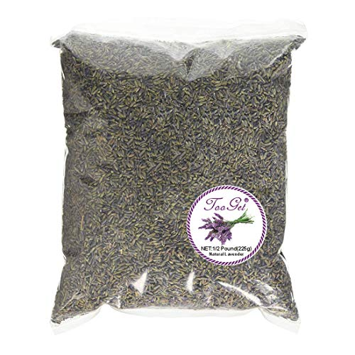 TooGet Natural Dried English Lavender Buds, 100% Raw Highland Grow Lavandula Angustifolia Dried Lavender Wholesale, Top Grade Lavender Flowers - 1/2 Pound