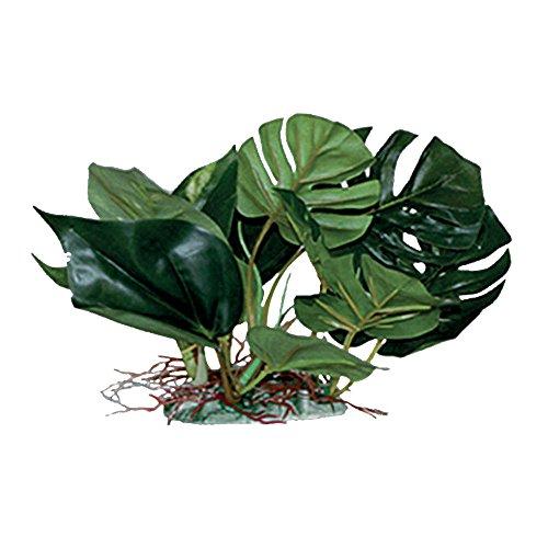 Querbehang Pet Diffusion Pflanze Dekor Anubias L 20 cm - 500 g