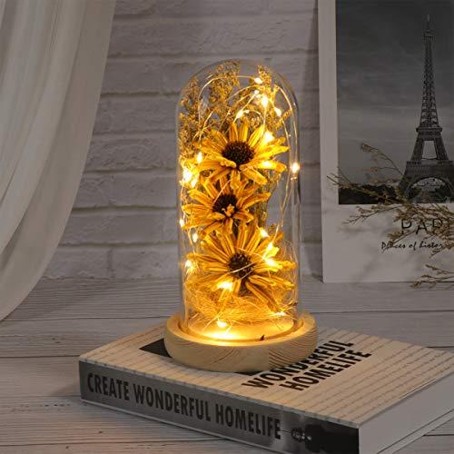 Mobestech Girasol en Una Cúpula de Vidrio con Luces Led Lámpara de Mesa Decorativa Flores Preservadas Regalos para El Día de su Madre Aniversario de San Valentín