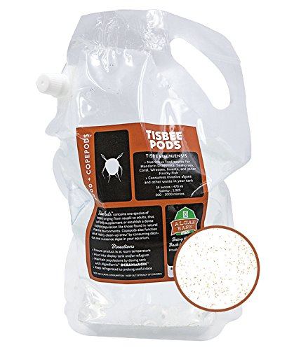 Tisbee Pods :: Live Copepods :: Tisbe biminiensis Copepods :: Cleans Your Tank :: Mandarin & Finicky Fish Food (12,000+ Pods)