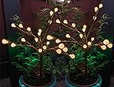 Luces Solares Jardin Decorativas 2 Piezas 20 Bolas de LED Blanco Cálido de faroles de Arboles Solar Exteriores Luz Solar Jardin de Tierra Impermeables Para Patio,Terraza, Césped,Pasillo