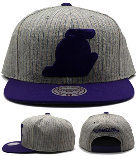 Mitchell & Ness Los Angeles Lakers New Suite Gray Purple Era Snapback Hat Cap