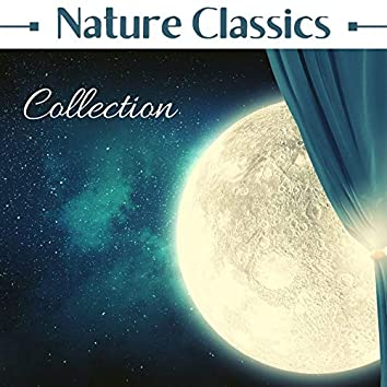 Nature Classics Collection: 101 Minutes Rain Sounds, Peaceful Natural Sound to Sleep Through the Night