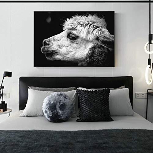 QQCYWZK Sin Marco Alpaca Animal Pography Wall Art Impresiones de la Lona para la Sala Animales en Blanco y Negro Canvas ngs Decoración nórdica de l 60x90cm