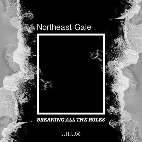 Northeast Gale