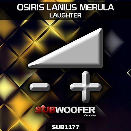 Osiris Lanius Merula