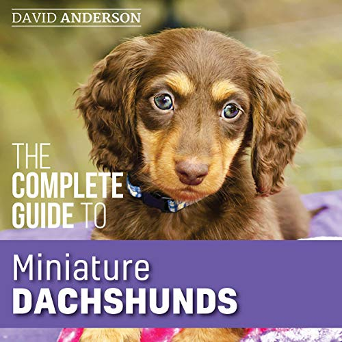 The Complete Guide to Miniature Dachshunds  By  cover art