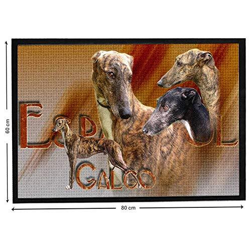 Pets-easy Lévrier Galgo Espagnol sur Tapis Design de lévrier