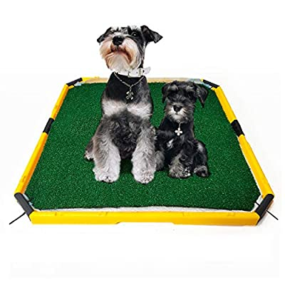 HUILE Artificial Grass for Dogs Pee Pads-Artificial Grass Bathroom Mat-Portable Potty Trainer for Indoor and Outdoor Use (21 in x 21 in) by HUILE INDUSTRIES LIMITED