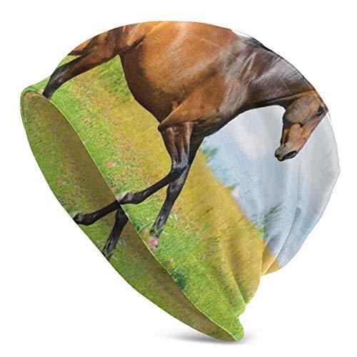Beanie Men Women - Horse Runs Galopa en Flower Meadow Rural Freedom Animal Picture - Gorra de Gorro de Punto con Calavera Lisa Unisex con puño Unisex