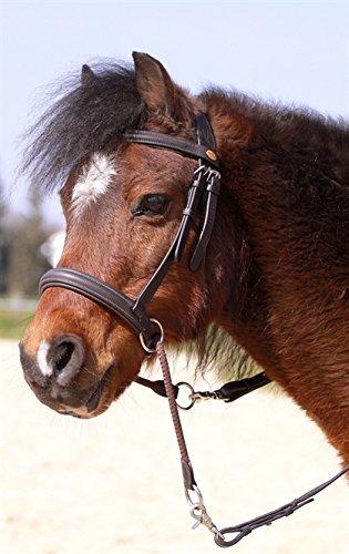 Gebisslose Zäumung Walnut Pony (braun)