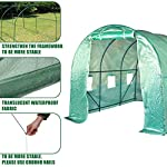 FDW L10'xW7'xH7' Greenhouse for Outdoors Greenhouse Plastic Mini Greenhouse Kit Indoor Portable Greenhouse Plant Shelves… 13 ♠【LARGE TUNNEL GREENHOUSE】The greenhouse use PE fabric with 1 rolling-up door and 8 vents for entry greenhouse. Tunnel greenhouse design offers growing space and ventilation for large size plants. ♠【PROTECT THE PLANTS】Outdoor greenhouse will surely extend your plants growing season no matter where you live, greenhouse can be set up easily. ♠【EASY TO ASSEMBE】The greenhouse comes with all hardware & necessary tools. Follow the portable greenhouse instruction, you'll found easy to set up, and estimated assembly with 2 people.