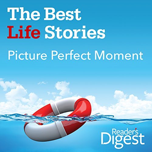 Picture Perfect Moment audiobook cover art