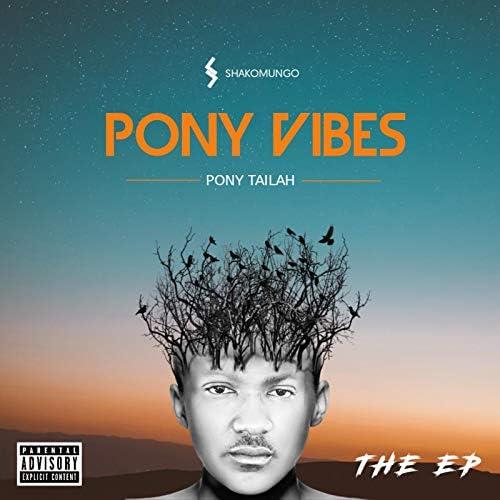 Pony Tailah