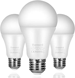 Best daylight energy saving light bulbs Reviews