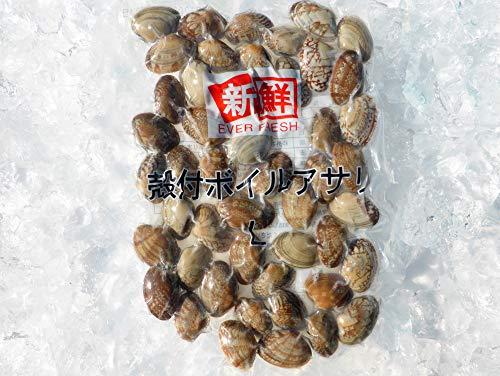 あさり (冷凍) 殻付 L 500g (41/50)×5パック