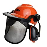 <span class='highlight'><span class='highlight'>BMS</span></span> Chainsaw Brushcutter Safety Helmet Metal Mesh Full Visor Forestry