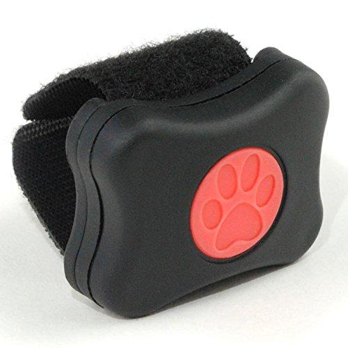 PIT PAT Pet Tracker Aktivitätstracker für Tiere, schwarz