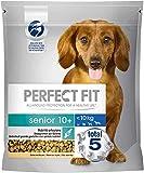 Perfect Fit Hundefutter Trockenfutter Senior 10+ für kleine und sehr kleine Hunde