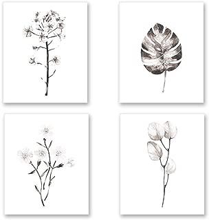 8x10 black and white prints