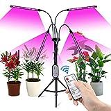 COKOLILA Pflanzenlampe Led, 80W Grow Light mit Ständer Tripod, 4 Heads Planzenlicht mit timer 4/8/12H, Grow Lampe Vollspektrum 360°Einstellbar Schwanenhals & Tripod für Indoor Plants